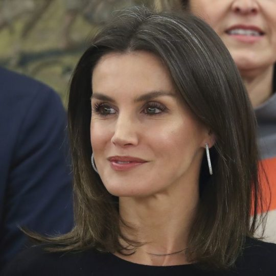 "Spanish Queen Letizia Ortiz during a hearing with the representation of the members of "" Comité Organizador de la Feria Internacional del Sector de Frutas y Hortalizas: Fruit Attraction"" in the ZarzuelaPalace in Madrid on Friday , 18 January 2019"